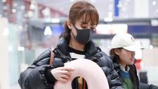不是酷gir是少女 杨紫深色面包服配粉嫩颈枕提前过冬