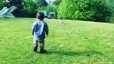 周杰伦拍儿子追鸽子反被昆凌偷拍
